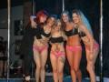 Divas-Show-2014-005