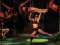 Divas-Show-2014-016